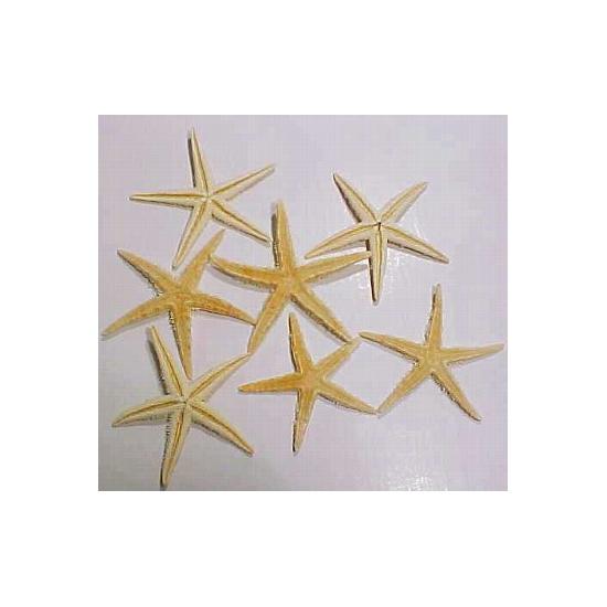 6x stuks decoratie zeesterren 10 cm