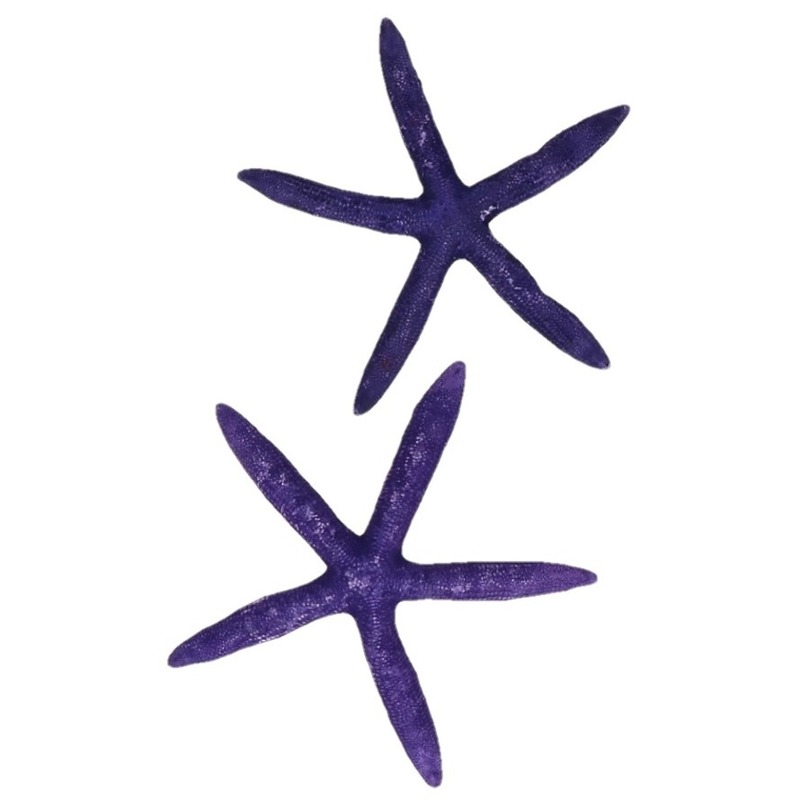 Decoratie paarse zeesterren 2 stuks