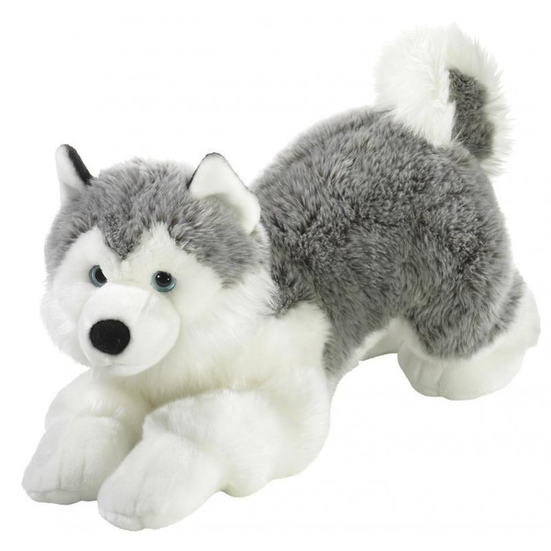 Grijs-witte pluche husky hond knuffel 60 cm