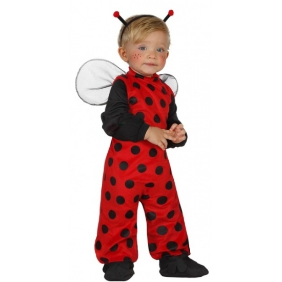 Lieveheersbeestje kostuum voor peuters. 4 delig lieveheersbeest pakje dat bestaat uit het pak, de vleugels, ...
