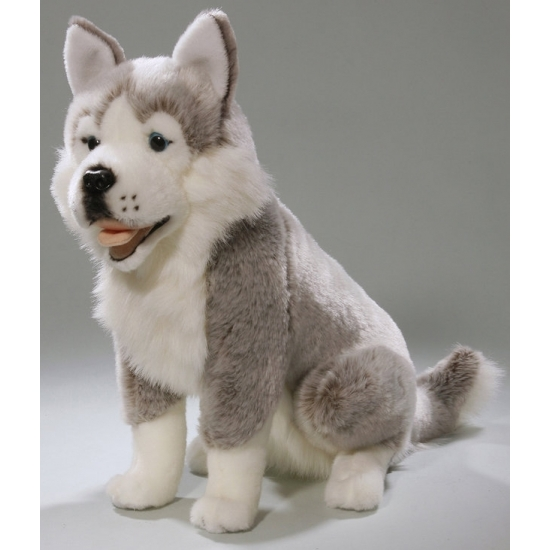Pluche Husky hond knuffel 37 cm
