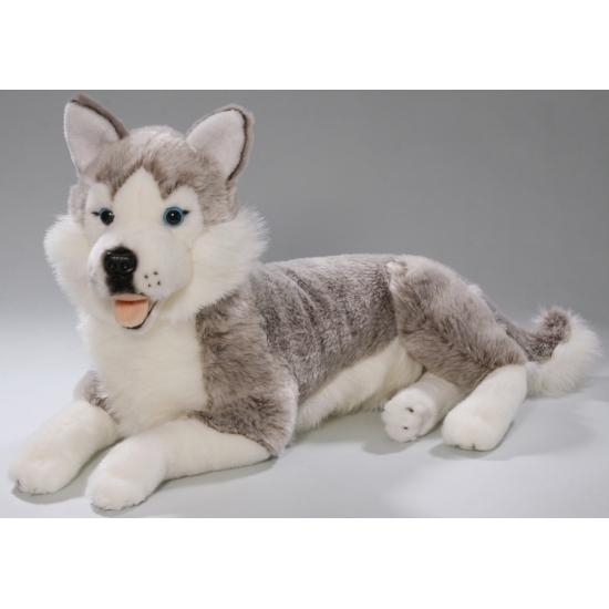 Pluche Husky hond knuffel 42 cm
