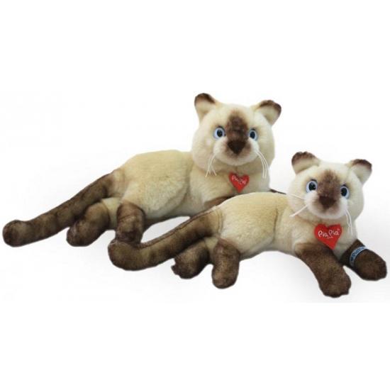 Pluche Siamese kat-poes knuffel 30 cm